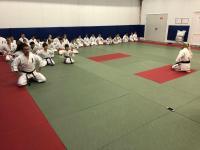 В Североморске в  клубах « Сатори» и « СФ Барс» прошёл семинар  по технике ( 21д